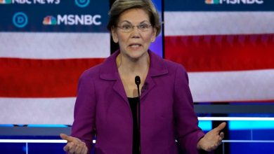 Photo of Elizabeth Warren's presidential campaign raised $11 million in January