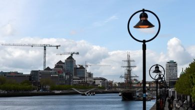 Photo of Irish services sector growth hits 25-month high: PMI survey
