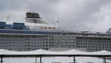 Photo of Royal Caribbean suspends global operations after virus outbreak