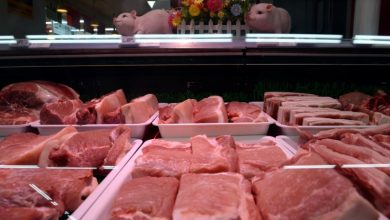 Photo of China to auction 20,000 tonnes of frozen pork from state reserves on March 27: notice