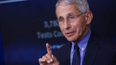 Photo of Fauci says reopening U.S. economy too soon could lead to needless deaths: NYT