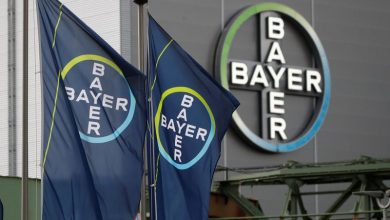 Photo of Bayer-Roundup $11 billion deal at risk of collapse, judge says: Bloomberg News