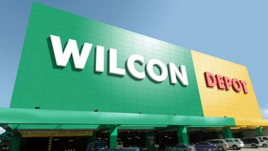 Photo of Wilcon's new stores make up for 'lost time'