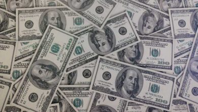 Photo of Forex reserves hit all-time high in end-October