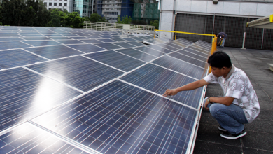 Photo of IEA: Regulation main source of uncertainty in growth of Philippine renewables industry