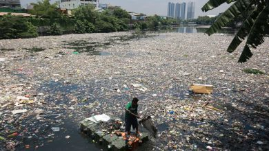 Photo of Plastics recyclers seen hampered by lack of incentives