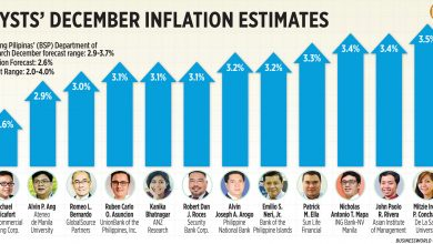Photo of Analysts' December inflation estimates (2020)