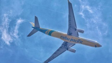 Photo of Cebu Air plans start of $250-M convertible preferred shares offering in Feb.