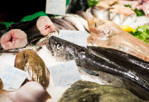 Photo of Government puts £23m support fund in place for struggling fishing firms