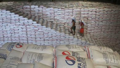 Photo of November rice stock rises by 6.6%