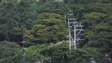Photo of Household electrification rate hits 92.96% in Oct. — DoE