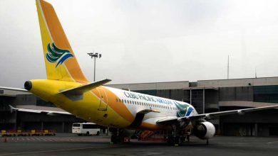 Photo of Cebu Pacific working with gov't for vaccine delivery, Cebgo CEO says