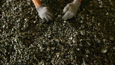 Photo of Foreign demand seen to boost nickel industry